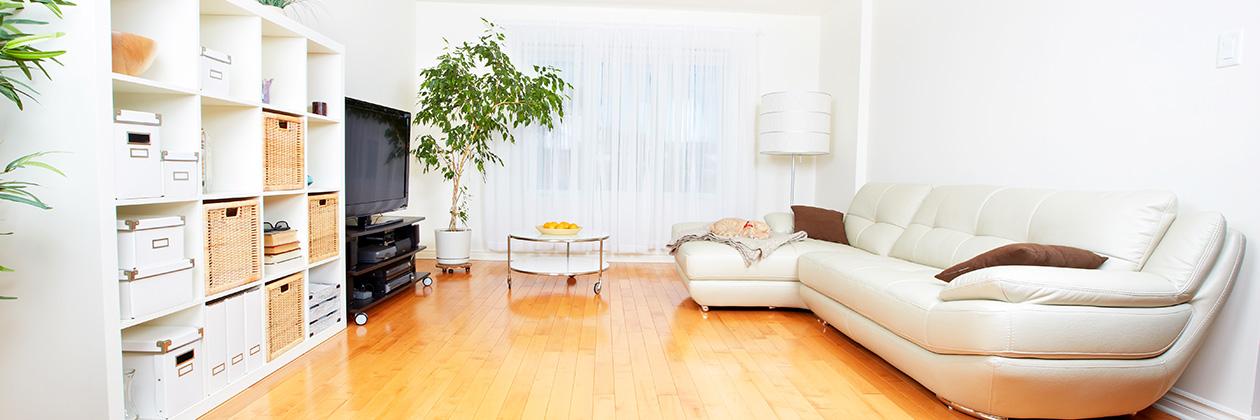 la solution optimisante pour la perception de revenus immobiliers. Black Bedroom Furniture Sets. Home Design Ideas