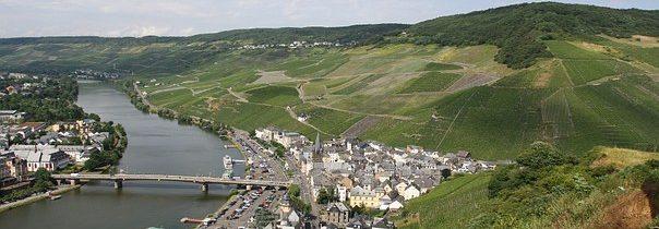 Comment évaluer un domaine viticole?