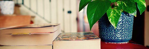 Une bibliothèque pour séparer une pièce, une bonne idée